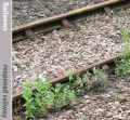 Scottish line to reopen in £70m project